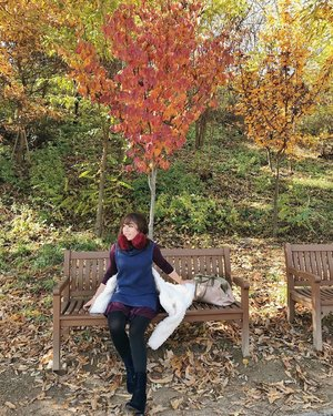27 Days more till I fly to Sydney, Australia 🇦🇺. Throwing back some photos of the cold autumn weather in South Korea 🇰🇷 as part of the #SydneyCountdown . Rest assured, I will be writing helpful tips and stories for YOU once I reach the Land down under ♥️. (Feel free to send me a message incase you feel like asking questions about this upcoming trip with @eontravel ~ promise, I'll be responsive!) #HuggingHorizons2019 • Hugginghorizons.com
