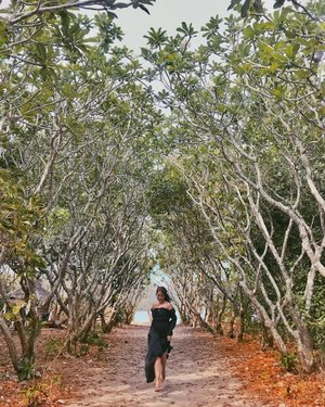 Slightly enchanted, furnished with a parade of whimsical fancy 'Calachuchi' trees #Nogas Island welcomed us. 🌳 🌱 🍃 #FlyPal4stars #HeartoftheFilipino #ExperienceAntique #ExperienceWesterVisayasFirst #KatahumTours