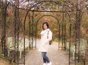#throwback to korea😭 Totally missing the weather and the colours of fall! 😍  #nomondayblues #clozette #ootd #fall #seoul #falloutfits #korea #gardenofmorningcalm #sgblogger #idblogger #motd #perfectweather #koreatourism #kto