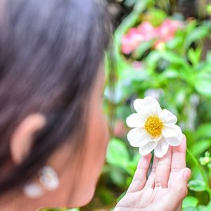 NEW #photoblog on www.creativwritr.com, check it out to see our new perspective! 😉✌️#creativwritr #beauty #travel #flowerdome #gardensbythebay #singapore #clozette The beauty of the natural world lies in the details. — Natalie Angier