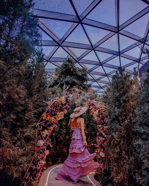 Enchanted garden ✨ • There is a garden in every childhood, an enchanted place where colors are brighter, the air softer, and the morning more fragrant than ever again. - Elizabeth Lawrence • • #exploreSingapore #Singapore #VisitSingapore #JewelChangiAirport #singaporeinsiders #singaporeworld