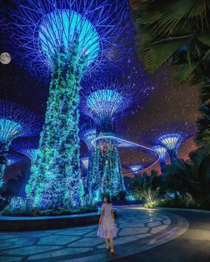 """#GardensbyTheBay is beautiful and glowing in the dark too.. 😍 Isn't this looks like Avatar in real life?  • • Quick Fact about Super Tree Groove:  This tree-like structures between 25 metres and 50 metres in height (9 to 16 storeys), the 18 Supertrees are uniquely designed vertical gardens, with emphasis placed on creating a """"wow"""" factor through the vertical display of tropical flowering climbers, epiphytes and ferns. At night, these canopies come alive with lighting and projected media. Do you know that the Supertrees are embedded with sustainable energy and water technologies integral to the cooling of the Cooled Conservatories. • • #exploreSingapore #VisitSingapore #Singapore #SuperTreeGroove"""