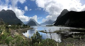 Milford sound cruise was a pretty good experience, and this view totally won my heart! 💓