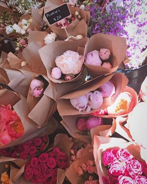 Peonies to brighten up your day 💐