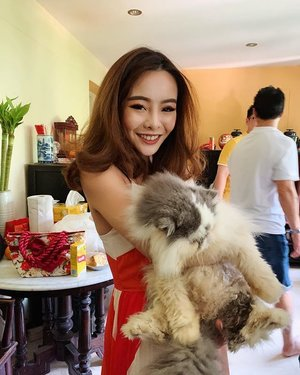 OVERCAME MY FEAR FOR CATS WITH THIS FURRY ONEEEE 😻 cny day 2! . . . #happynewyear2019 #cny2019 #furfriends #kittycat #clozette