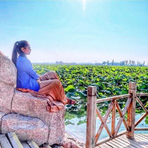Looking back to my @discoverningxia trip!  Jin Sha island in Yinchuan, China is one of the beautiful place I've visited! Sad that we missed the blooming months of the Lotus! Must be a gorgeous view! So here I am on the photo above just aprreciating how beautiful and peaceful this place is. 💜 Check out my blog and youtube channel -Jane Fashion Travels- to see the Amazing Lavender Fields too! 💐 ⠀⠀⠀⠀⠀⠀⠀⠀⠀⠀⠀⠀ 💜 Have you been to any flower fields?? Comment/share the places pls!😍TIA! ⠀⠀⠀⠀⠀⠀⠀⠀⠀⠀⠀⠀ ⠀⠀⠀⠀ 📍 Jin Sha Island Zhongwei Ningxia China. Wetland, Lotus Field 📌Also, New Blog and Video is up guys! ❤️Click the Link on my Bio here: @tauyanm ⠀⠀⠀⠀⠀⠀⠀⠀⠀⠀⠀⠀ 📌Don't forget to watch my instagram Highlights too! 😉 ⠀⠀⠀⠀⠀⠀⠀⠀⠀⠀⠀⠀ 📌You can watch all my Videos - Travel Vlogs on my youtube channel Link on my Bio click here 👉🏽 @tauyanm or search > jane fashion travels < on youtube ⠀⠀⠀⠀⠀⠀⠀⠀⠀⠀⠀⠀ 💞will return all the LIKEs/COMMENTs💞 #girlsvsglobe #thetravelwomen #girlsjustwannatravel #dubaiphoto #girlsborntotravel #ladiesgoneglobal #sheisnotlost #shetravels #travelgirldiary #femmetravel #darlingescapes #wearetravelgirls #girlslovetravel #filipinoblogger #girlsthatwander #womentravel #passionpassport #dubaiinstagram #discoverunder15k #janefashiontravels #wearetravelgirls #girlswhotravel #ningxiachina #girlswhowander #dubaibloggers  #igersdubai #china #clozette