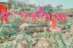 You are the straw to my berry!🍓 📍Strawberry de Cantipla Eco Farm is one of the tophills attraction in Cebu! What I love here are the fresh berries and their delicious strawberry halu-halo in their cute pink snack house!😍🍧 They also have the following: strawberry pizza, strawberry clubhouse, strawberry burger, strawberry ice cream, strawberry mango float, strawberry leche flan, strawberry banana split and many more! I can't imagine the taste of these snacks.😂 Have you tried these foods? #SugboPh
