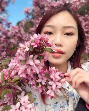 🌸 S A K U R A 🌸 Never knew Australia had their version of sakura hehe. PS: Pretty proud of how my selfies turned out! 😎 • • • #carinnxtravel #carinninmelbourne #carinninaustralia #melbourne #australia #tesselaartulipfestival #throwback #clozette #sakura #rinnstagram #selfie