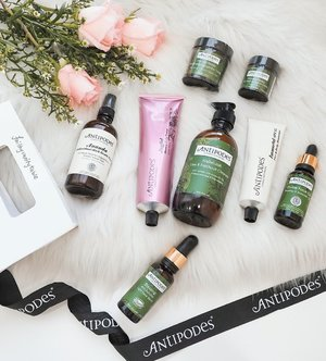 Which is your favourite product from @antipodesskincare? Cruelty-free, natural, skin-loving cult brand from #NZ,  #Antipodesskincare is designed for eco-conscious skincare lovers from all over the world. Just started on their latest launch, Blessing Anti-Pollution Light Face Serum as well as the highly raved Manuka Honey Skin-Brightening Eye Cream. Looking forward to brighter skin days! . #skincareroutine #antipodes #clozette