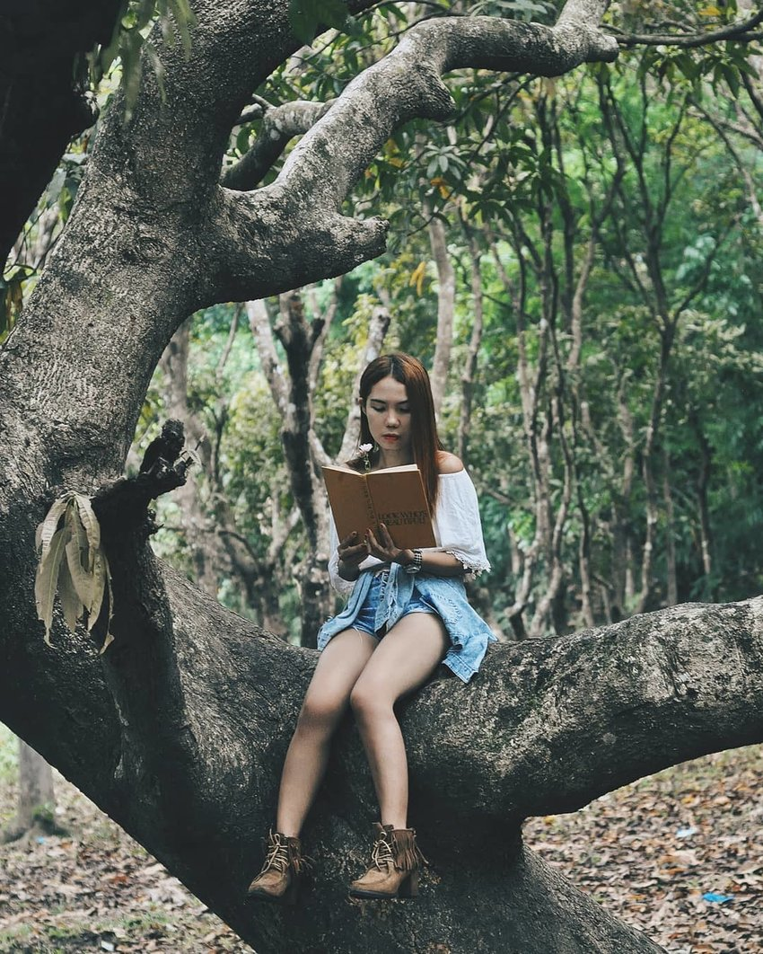 Girl reading a book in the forest